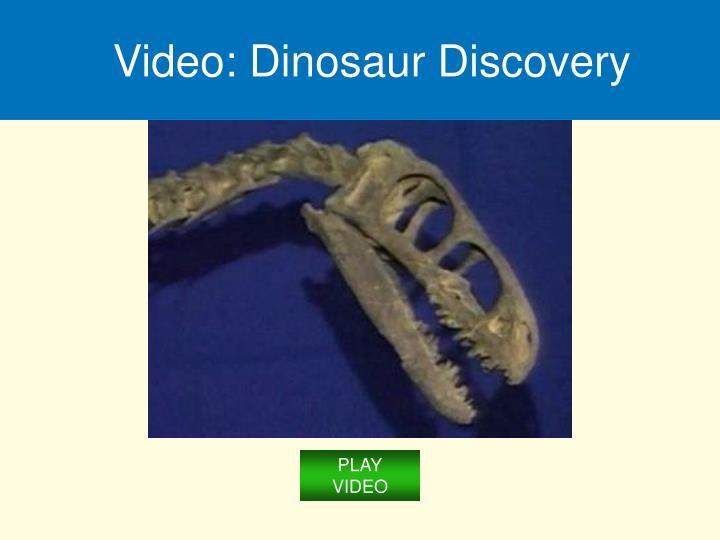 Video: Dinosaur Discovery