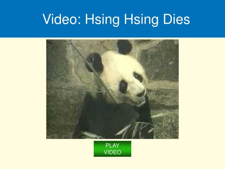 Video: Hsing Hsing Dies