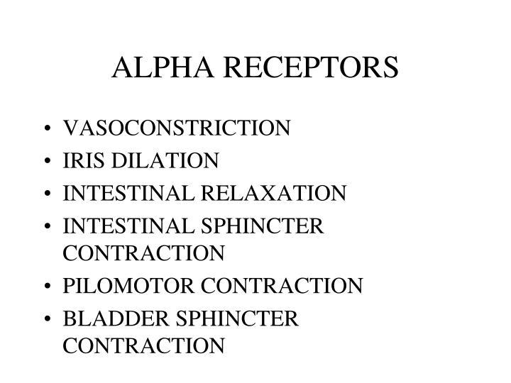 ALPHA RECEPTORS
