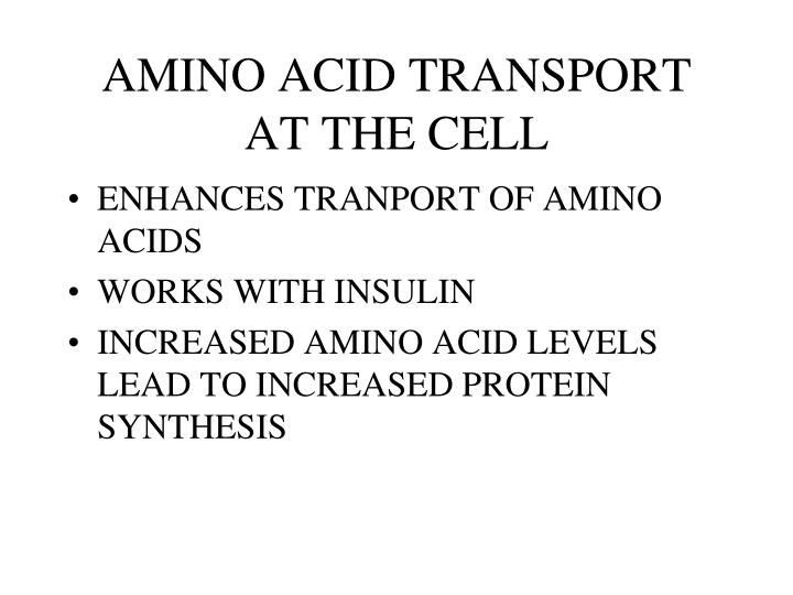 AMINO ACID TRANSPORT AT THE CELL