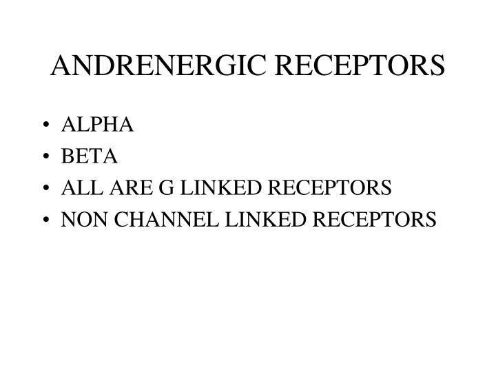 ANDRENERGIC RECEPTORS