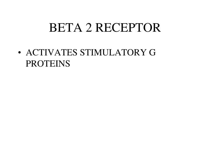 BETA 2 RECEPTOR