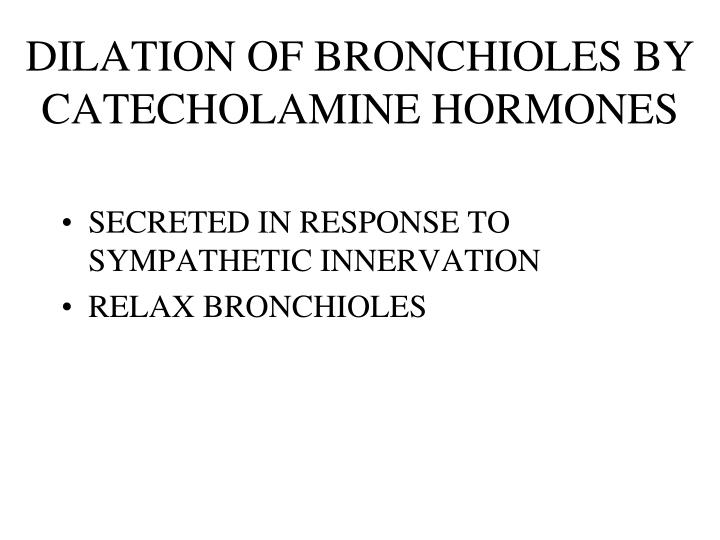 DILATION OF BRONCHIOLES BY CATECHOLAMINE HORMONES
