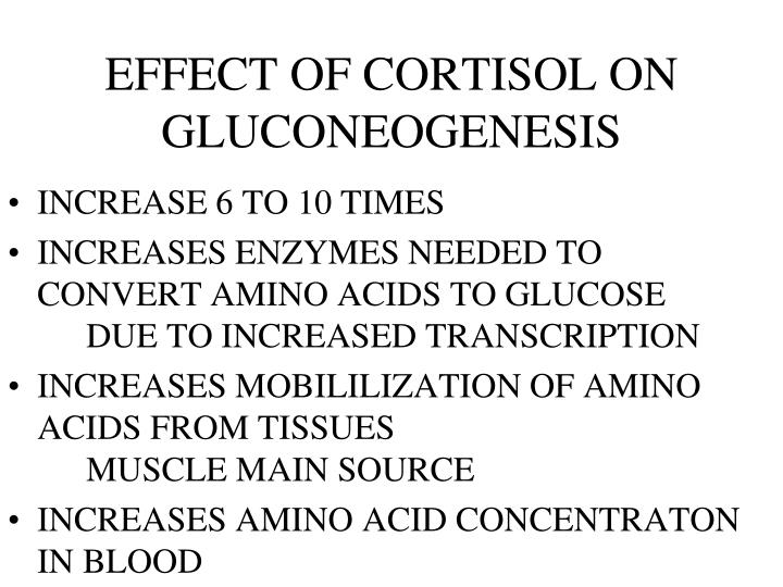EFFECT OF CORTISOL ON GLUCONEOGENESIS