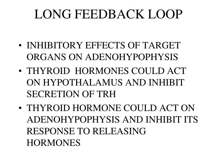 LONG FEEDBACK LOOP
