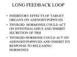 long feedback loop