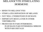 melanocyte stimulating hormone