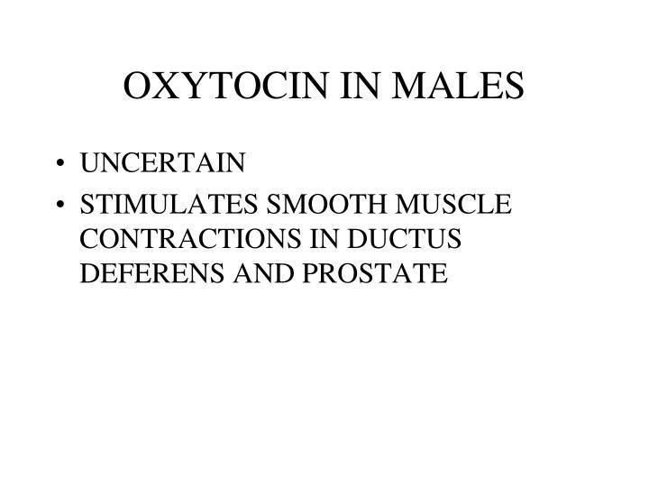 OXYTOCIN IN MALES