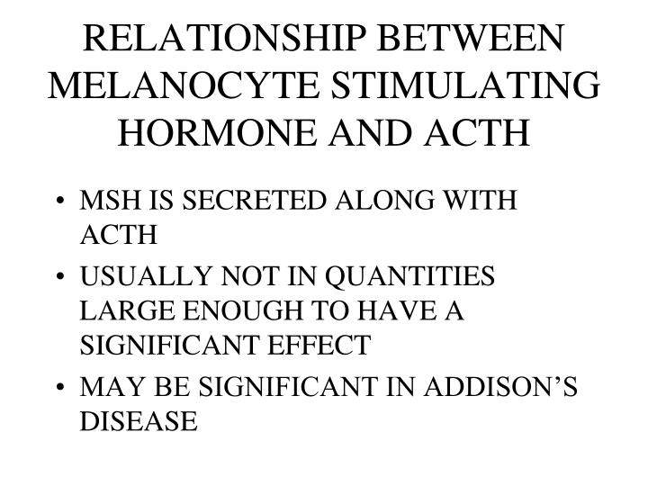 RELATIONSHIP BETWEEN MELANOCYTE STIMULATING HORMONE AND ACTH