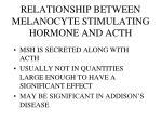 relationship between melanocyte stimulating hormone and acth