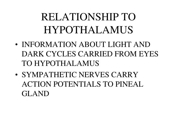 RELATIONSHIP TO HYPOTHALAMUS
