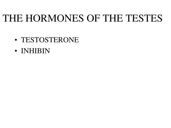 THE HORMONES OF THE TESTES
