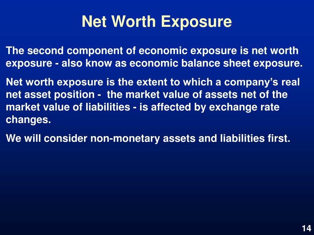 Net Worth Exposure