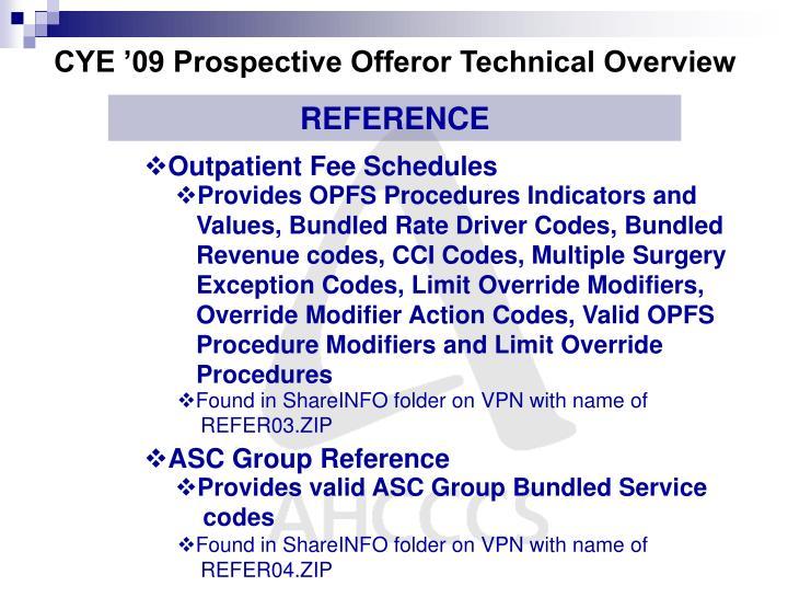 CYE '09 Prospective Offeror Technical Overview