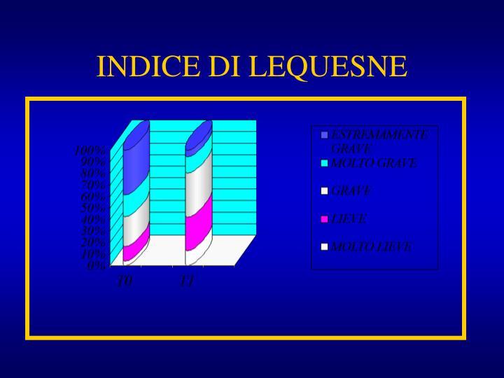 INDICE DI LEQUESNE
