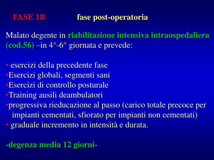 FASE 1B