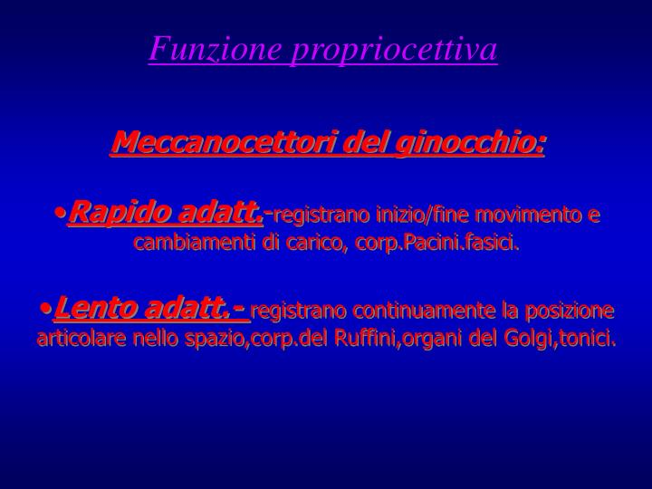 Funzione propriocettiva