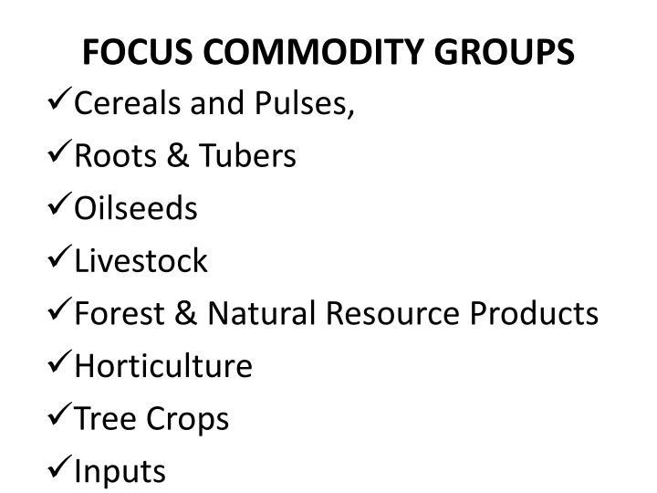 FOCUS COMMODITY GROUPS