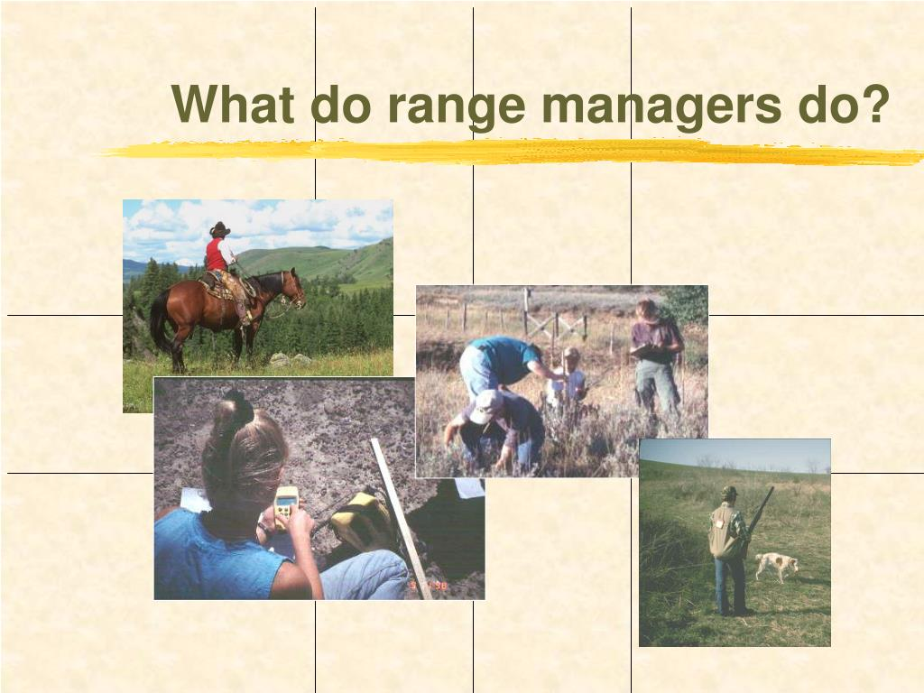 What do range managers do?