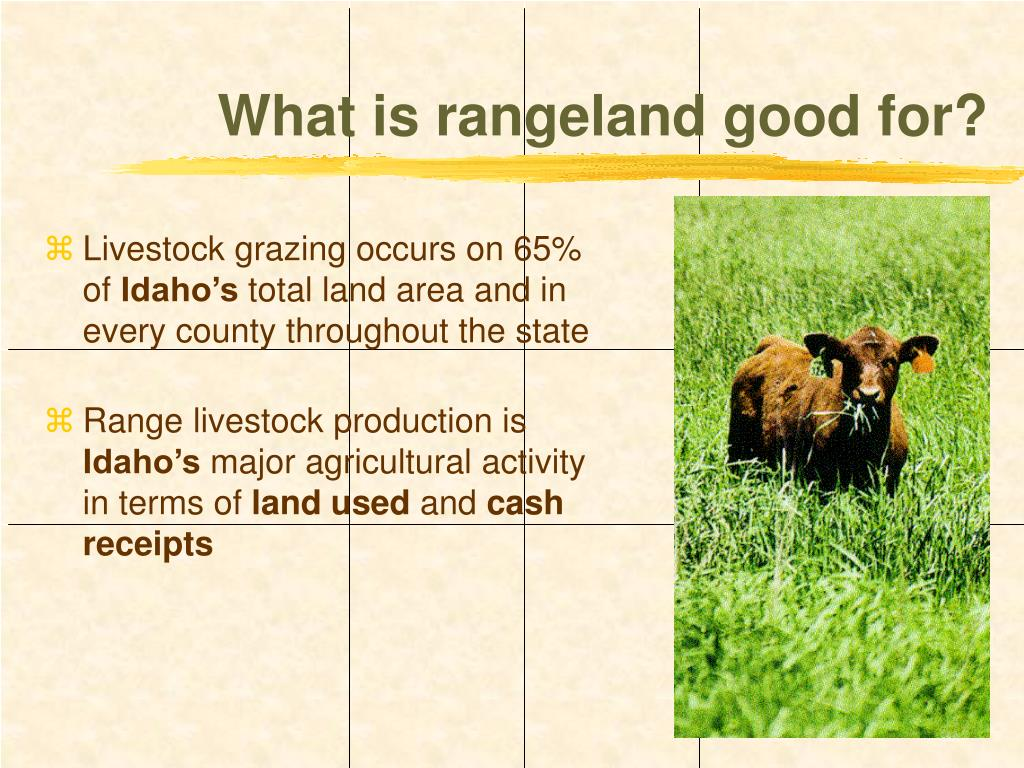 What is rangeland good for?