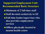 supported employment unit recommended basic structure