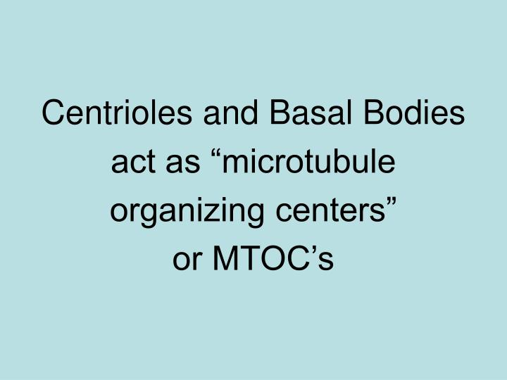 Centrioles and Basal Bodies