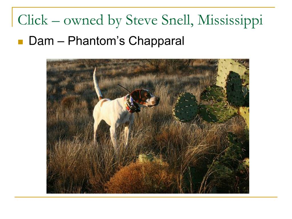 Click – owned by Steve Snell, Mississippi