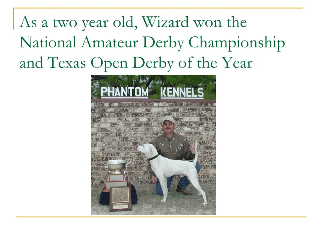 As a two year old, Wizard won the National Amateur Derby Championship and Texas Open Derby of the Year