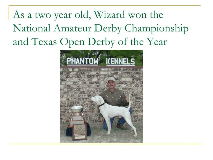 As a two year old, Wizard won the National Amateur Derby Championship and Texas Open Derby of the Ye...