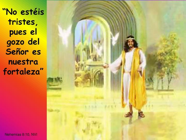 """No estéis tristes, pues el gozo del Señor es nuestra fortaleza"""