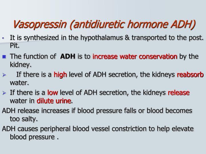 Vasopressin (antidiuretic hormone ADH)