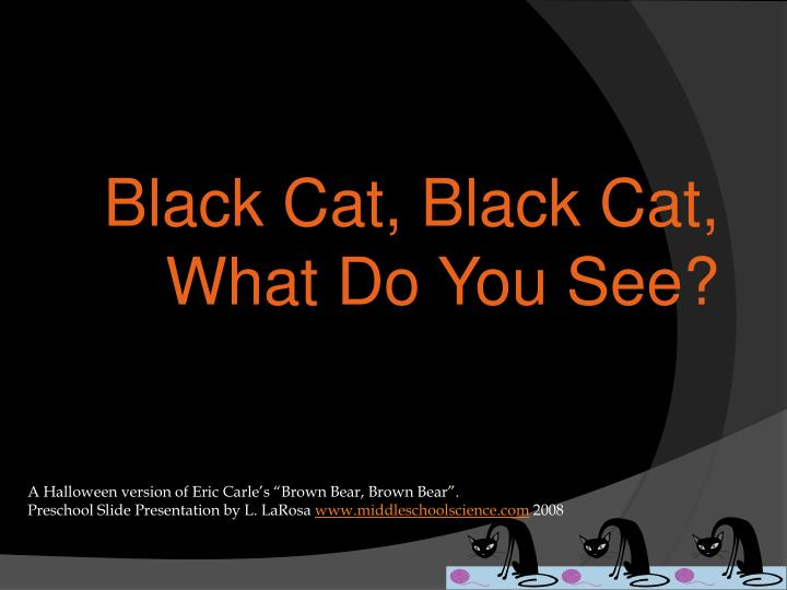 Black cat black cat what do you see