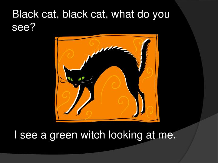 Black cat black cat what do you see1