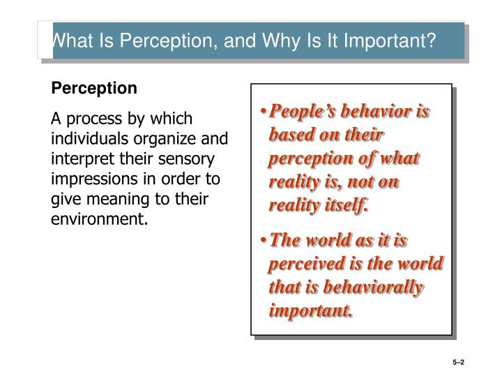 What Is Perception, and Why Is It Important?