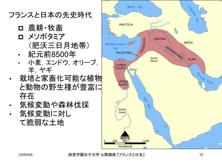 フランスと日本の先史時代