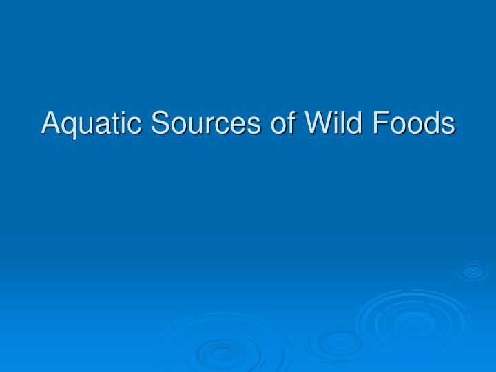 Aquatic Sources of Wild Foods
