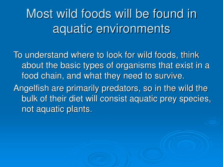 Most wild foods will be found in aquatic environments