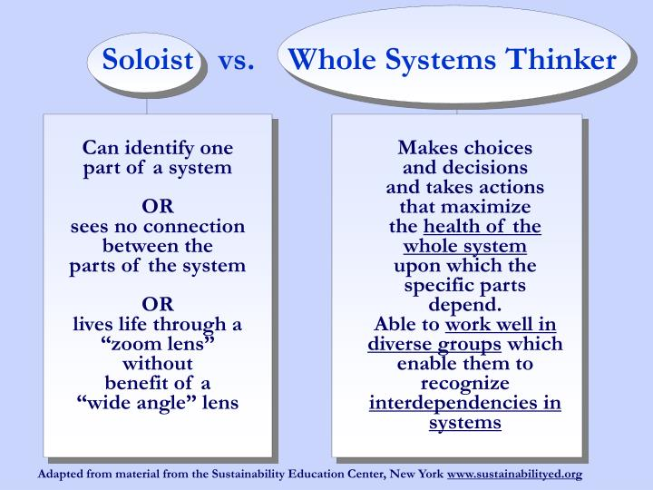 Soloist   vs.    Whole Systems Thinker