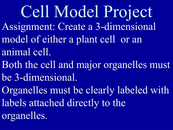 Cell Model Project