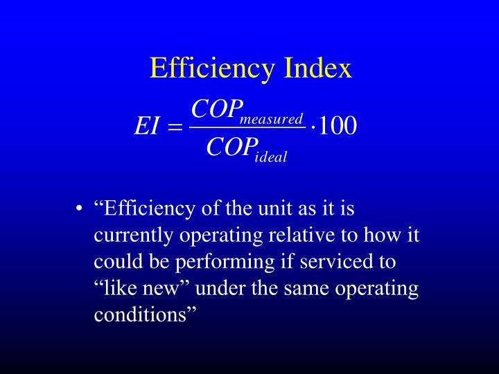 Efficiency Index