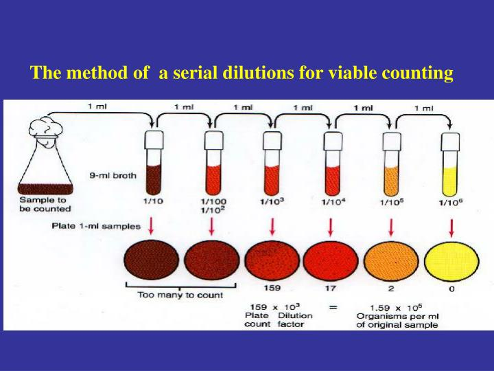 The method of  a serial dilutions for viable counting