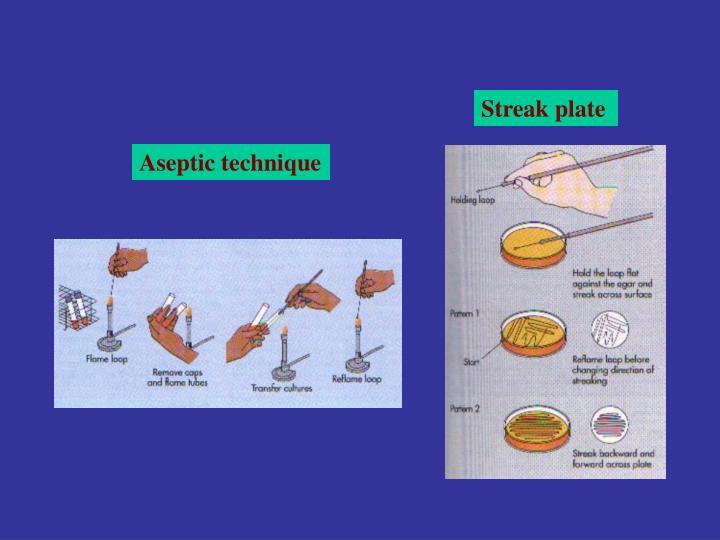 Streak plate