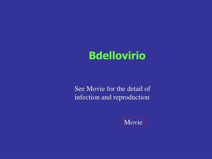 Bdellovirio