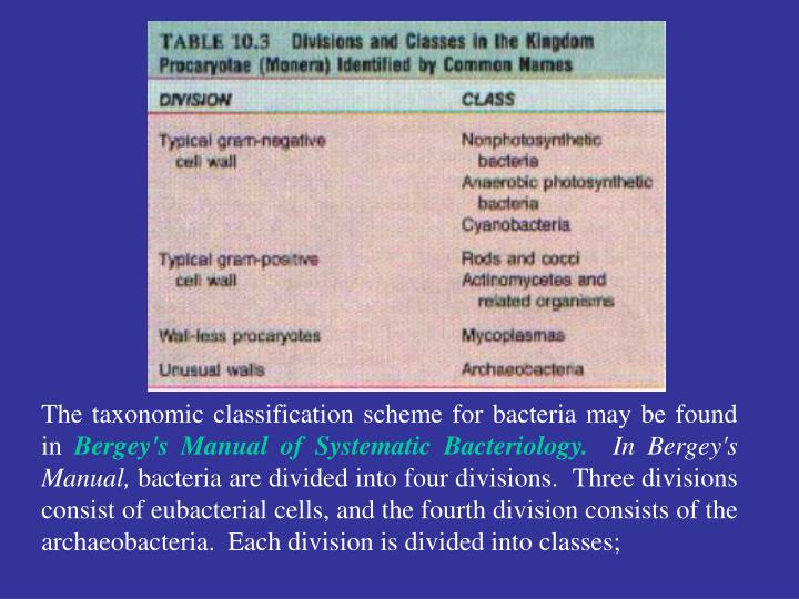 The taxonomic classification scheme for bacteria may be found in