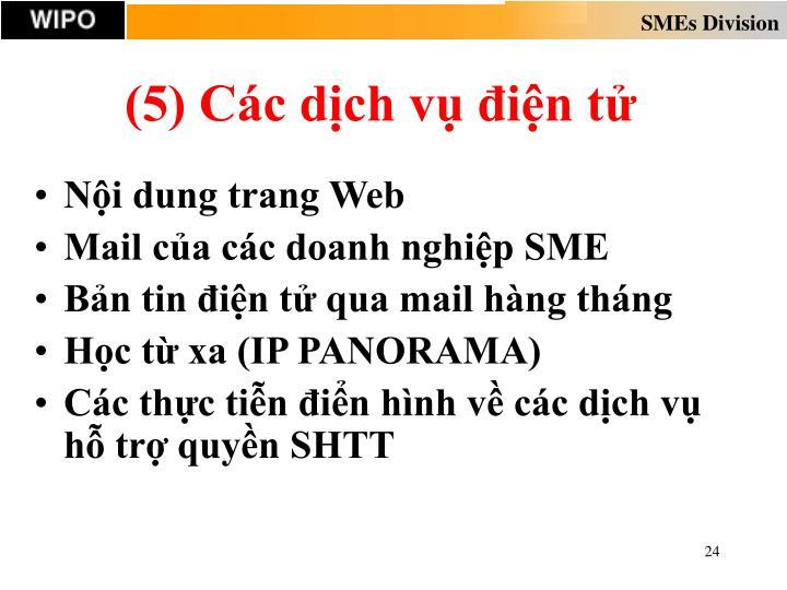(5) Các dịch vụ điện tử