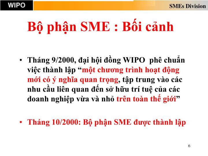 Bộ phận SME : Bối cảnh