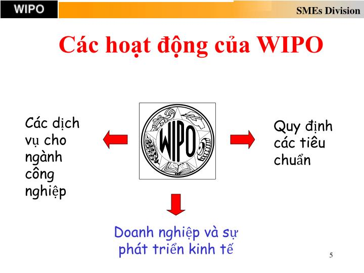 Các hoạt động của WIPO
