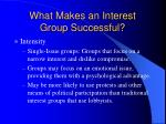 what makes an interest group successful5