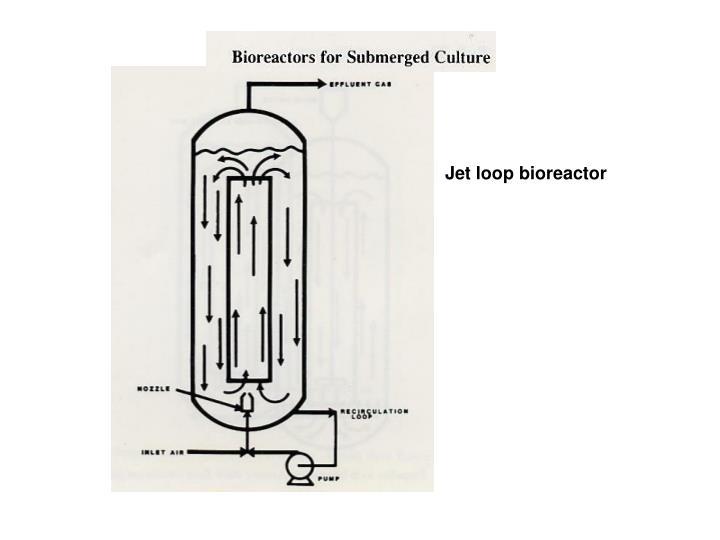 Jet loop bioreactor