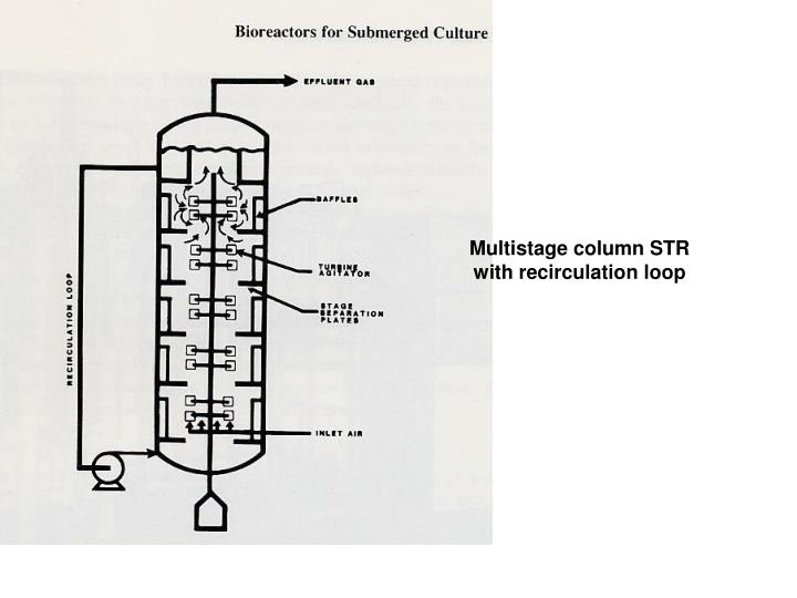 Multistage column STR with recirculation loop